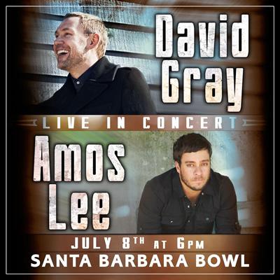david_gray_amos_lee